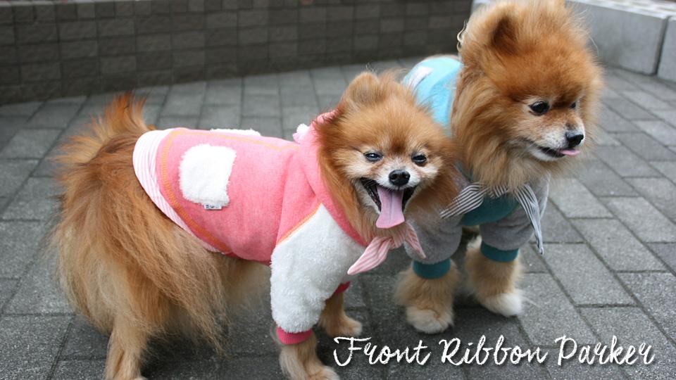 d o g webstore 犬服shop